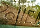 climatistion-allergie-pollen